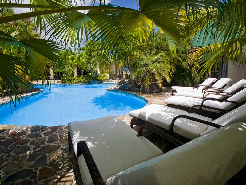 Piscine de forme libre de Allamanda immobilier situé dans un jardin Tropical