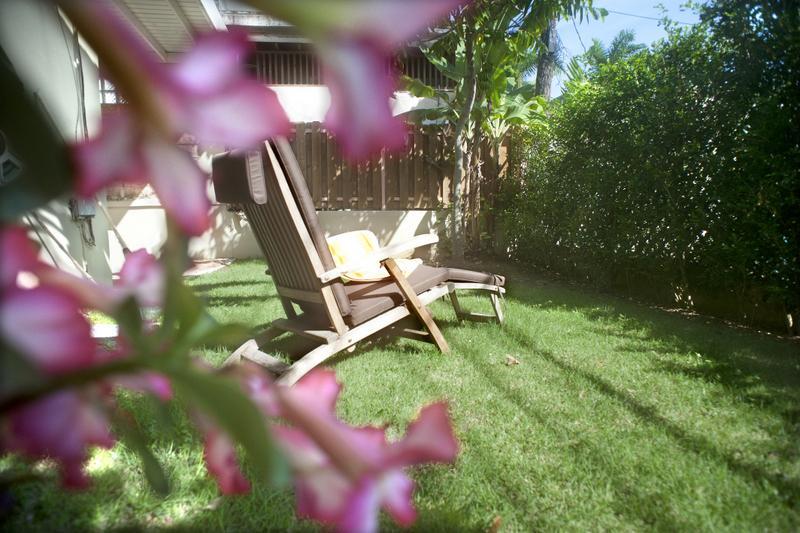 back patio & lawn area