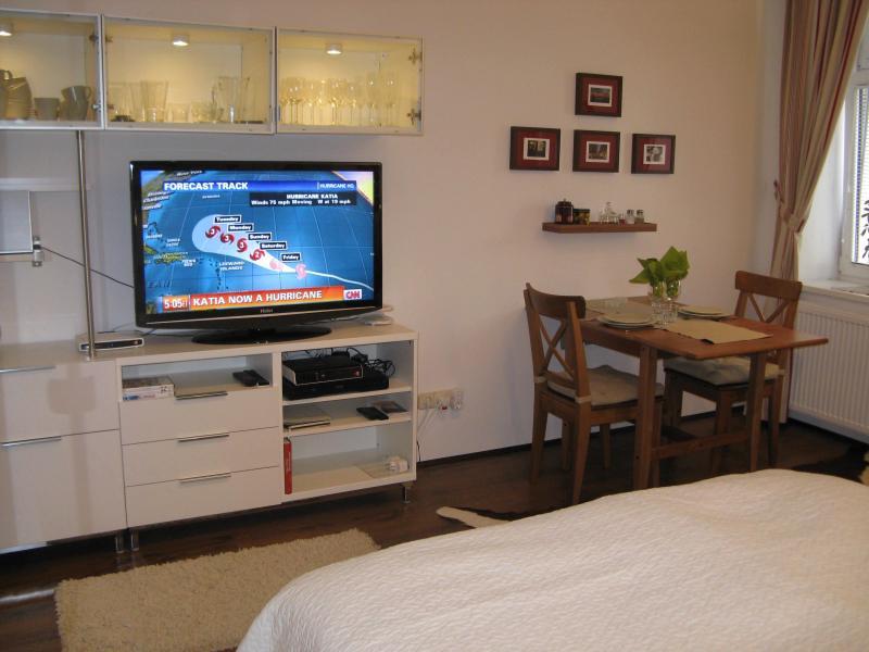 42inch flat screen TV, lots of international channels