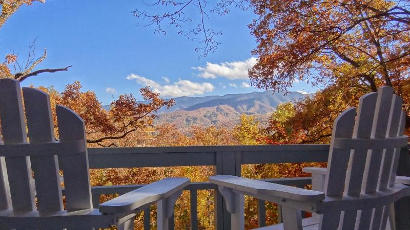Sit down with a cup of coffee and enjoy the fall foliage