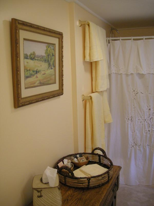 Bathroom of Apartment