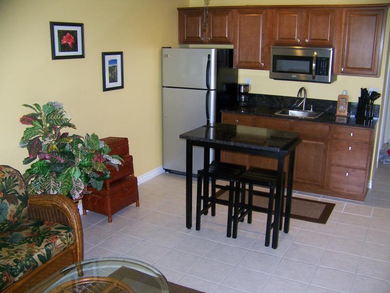 Kitchenette with Granite Counters