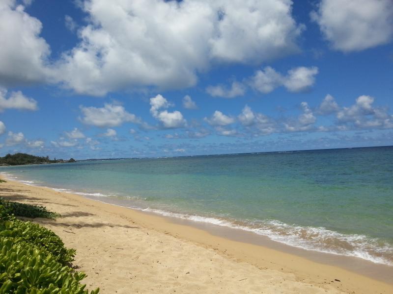 Calm, warm, ocean water looking north