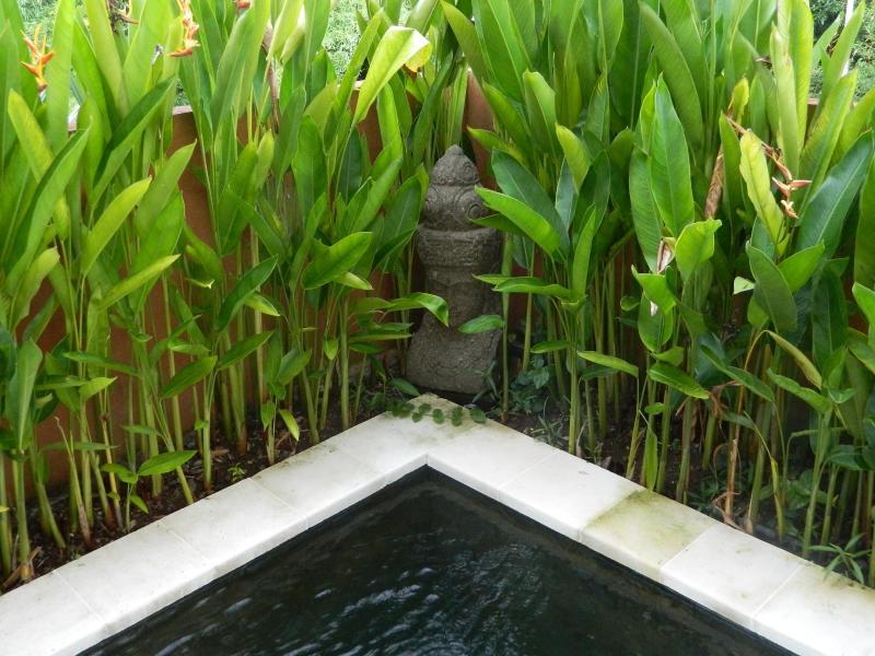 buddha round plungepool
