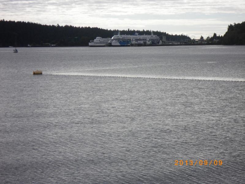 Ferry & Swimming area, Departure Bay Beach