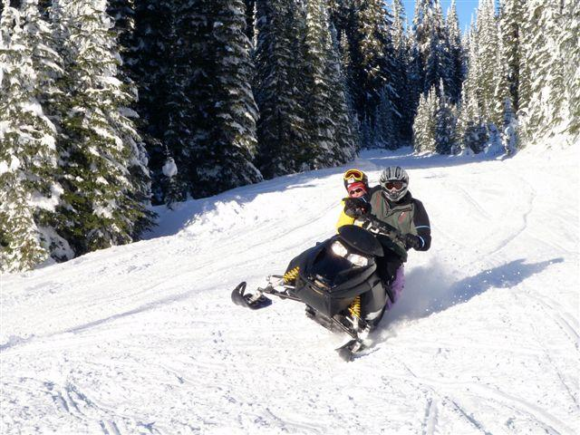 snowmobiles for rent - plus Mini-z's for kids
