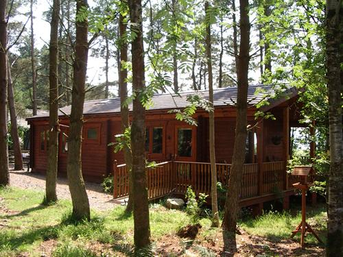 Side of chalet with parking area. Ramp access and 1/3 acre private, enclosed wooded area
