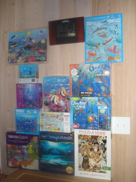 Puzzle. Attività di sera o di giorno di pioggia. Marine orientata. Miscele di adulti + bambini. 100 di libri troppo