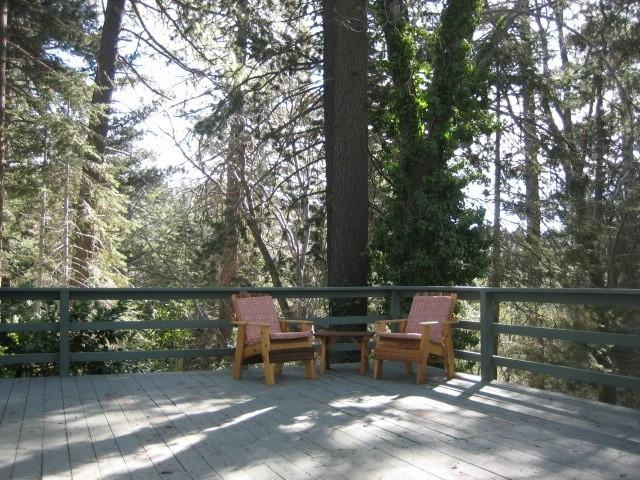 Front Deck surrounded by tress