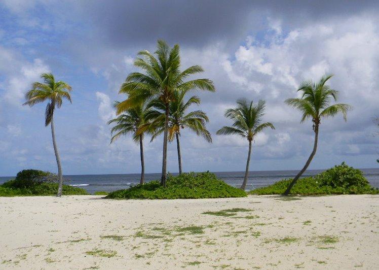 Beautiful Pelican Cove Beach