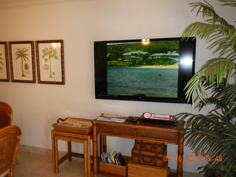 Living room with brand new 55 inch LCD TV with Blue Ray player