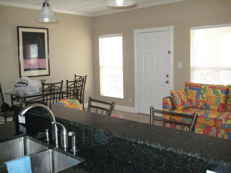 Open Kitchen, Dining, Living Area