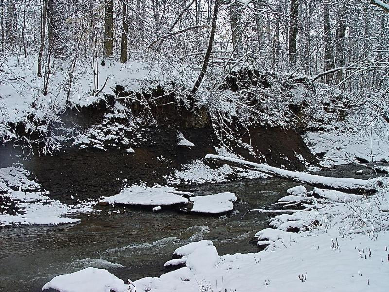 Winter: Spring Creek