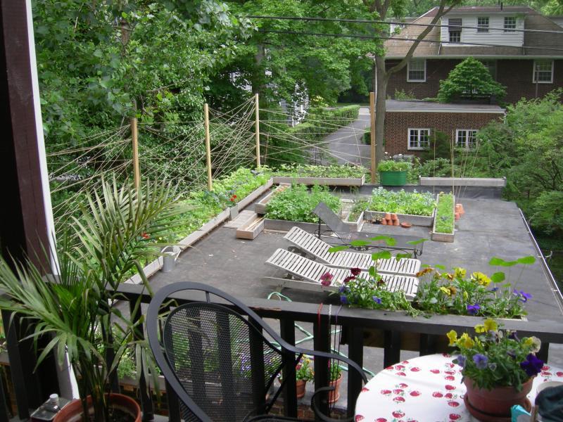Garage jardin