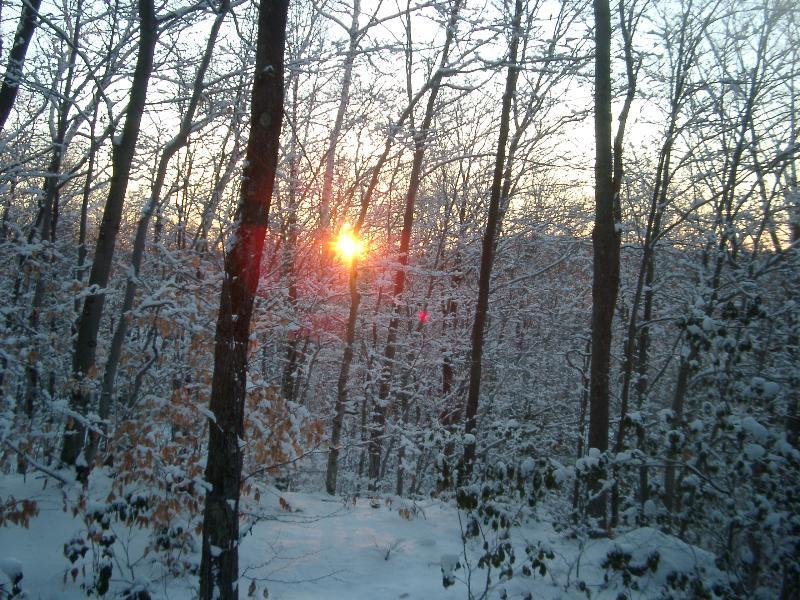 Hermoso amanecer-puesta de sol desde nuestro nuevo porche con vistas a 4 acres