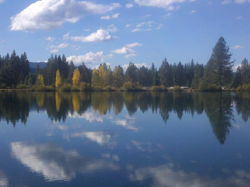 Mill Pond in the fall
