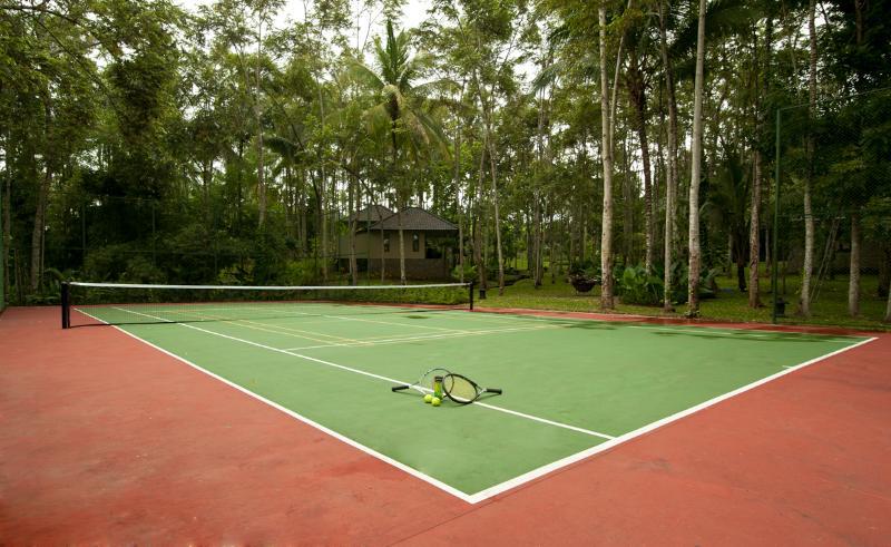 Nous avons des courts de tennis et de badminton disponible - sans frais