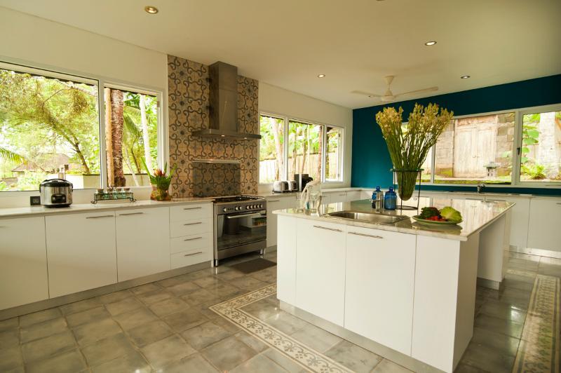 La cuisine est immense - idéal pour les maisons de vacances, ou permettent de s'occuper de tout
