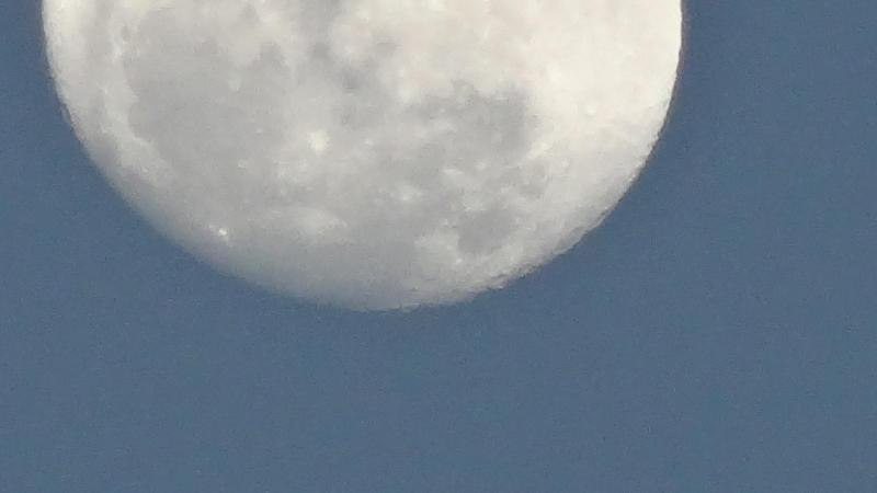 La luna vista desde nuestra terraza