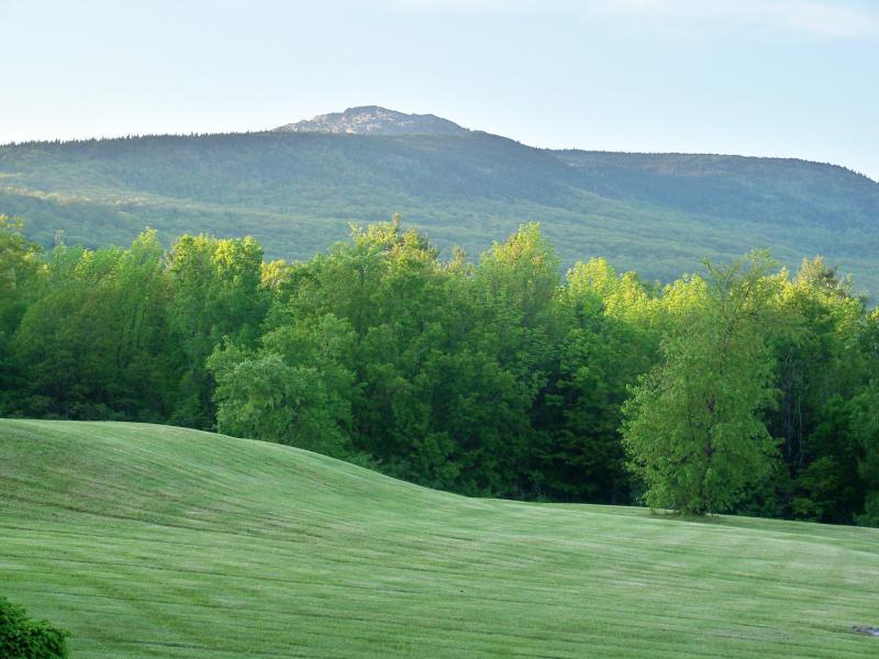 Pastorala & Mountain View från bakgård