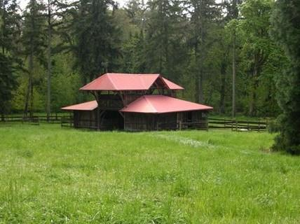Madrona Meadows Bed and Barn, holiday rental in Olalla