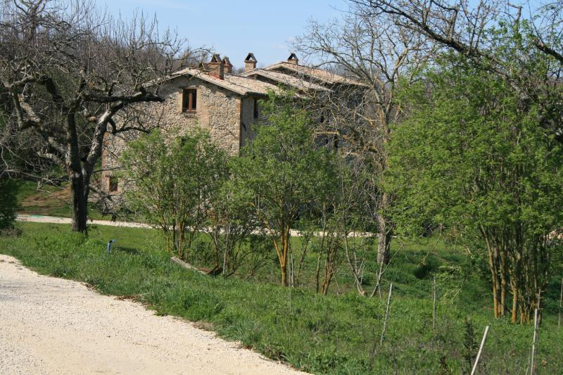 CASALE VIGNOLO ...your country house in Italy...