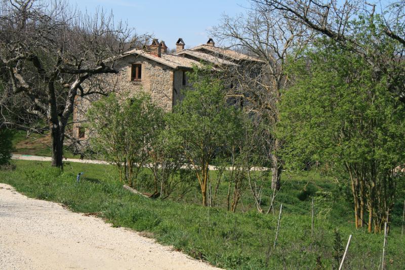 Casa Di Campagna Traduzione Francese : 1 recensioni e 21 foto per casale vignolo la casa aggiornato al