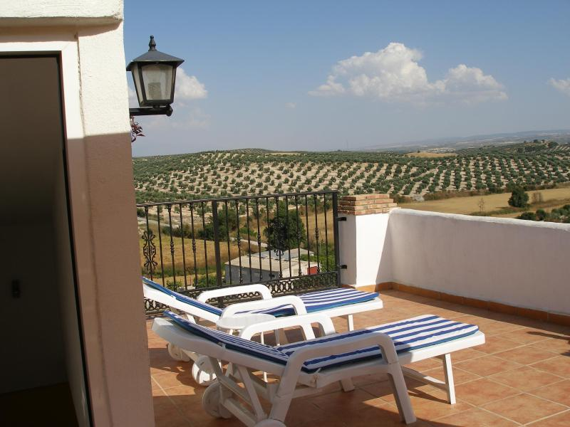 Tranquil Village House Superb Views Sierra Nevada Rooftop Terrace, vacation rental in Illora
