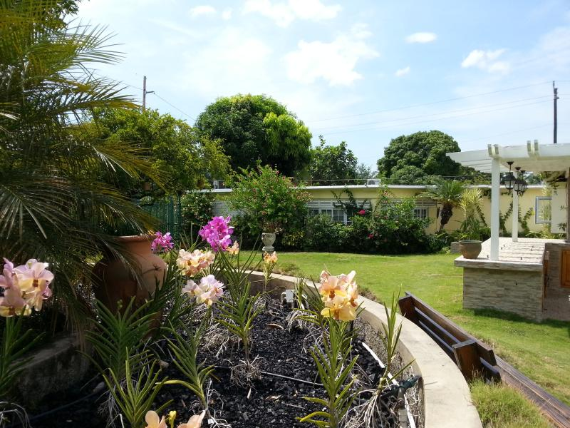 KINGSTON COTTAGE - Tropical Serenity - B&B, vakantiewoning in Kingston