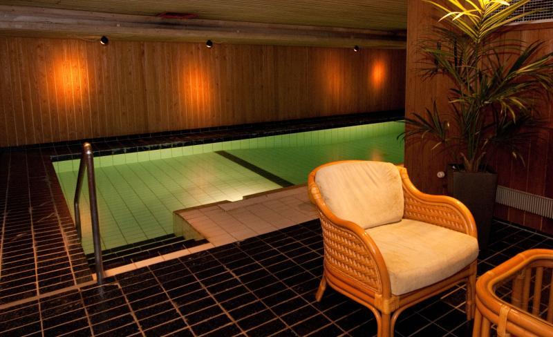 Swiming pool in the basement
