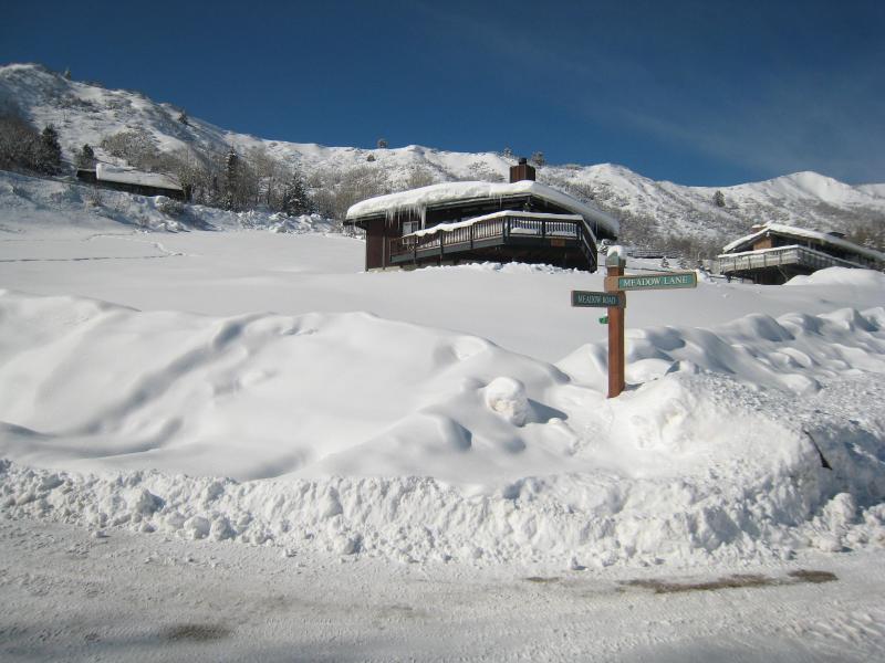 Ski Ball Chalet