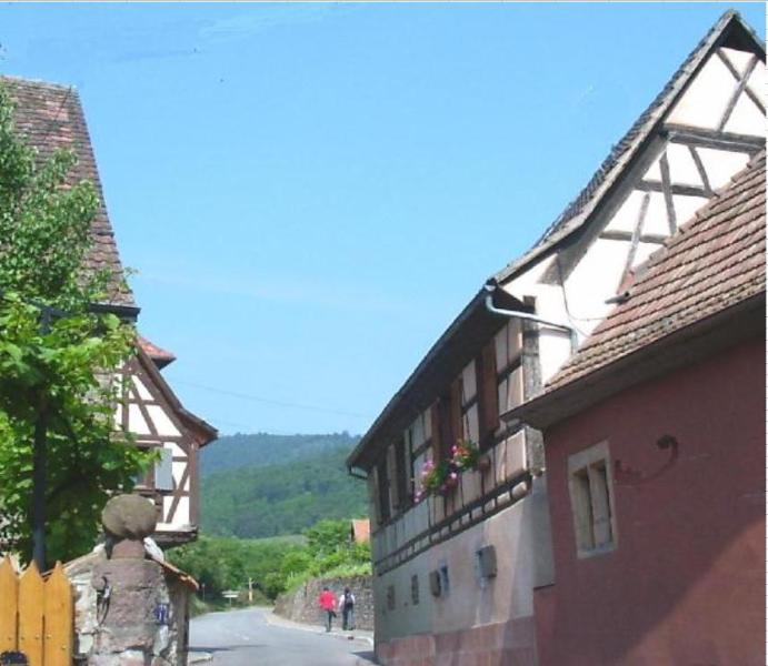 Gite Colmar, vacation rental in Ingersheim