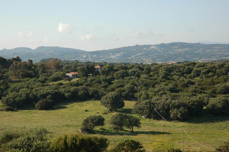 Landhaus Bassacutena, vacation rental in San Pasquale