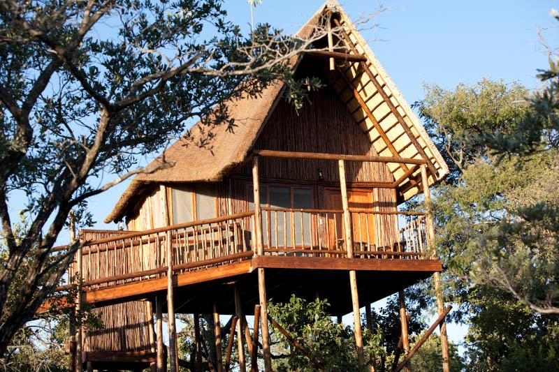 Our tree houses have mountain and sunset views with easy to use ramps, ensuite baths, outside shower