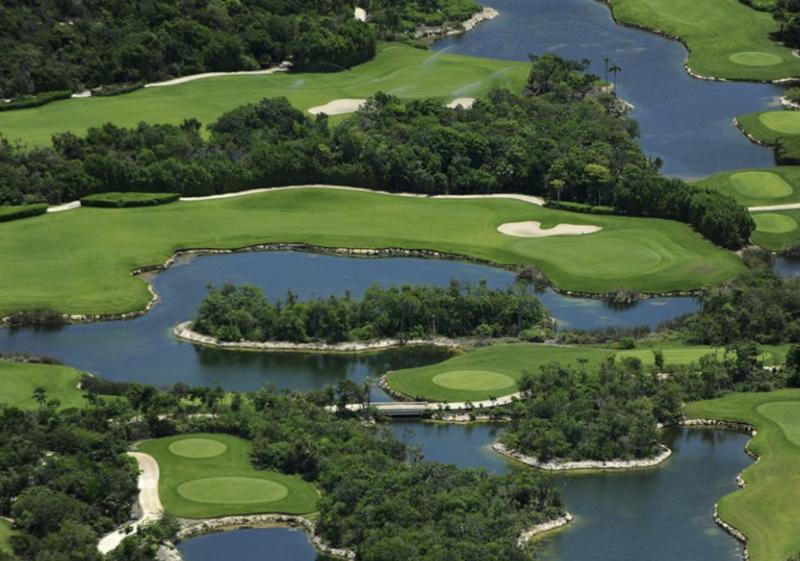 Golf court setting