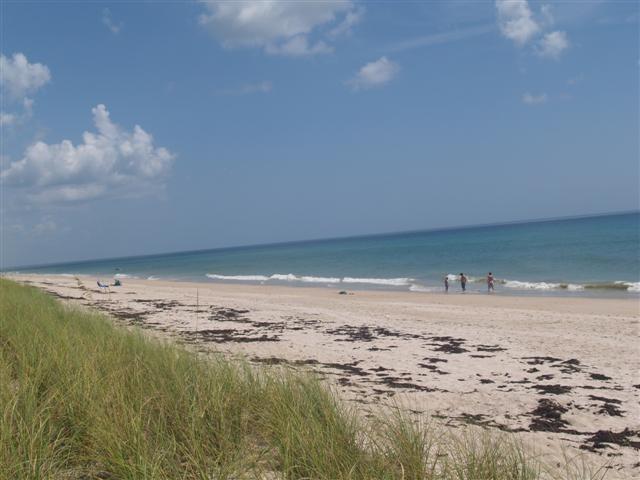 Vue de la plage vers le Nord