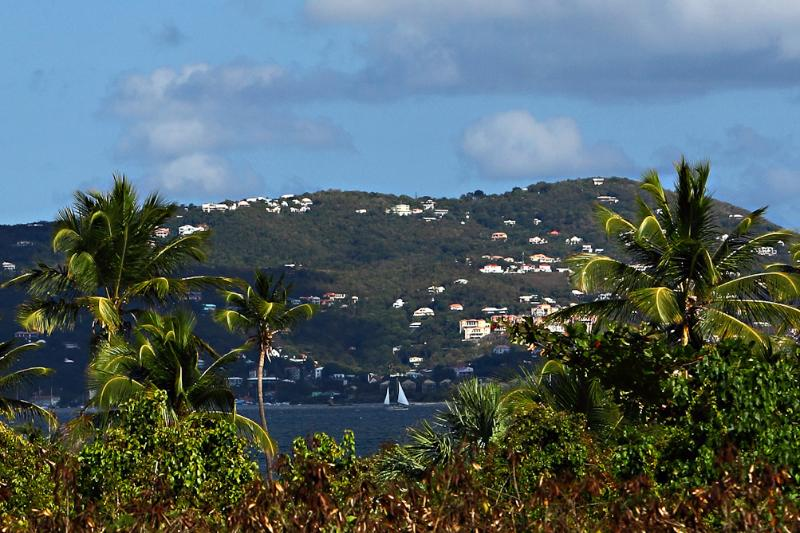 Venturing over to St. John for the day?