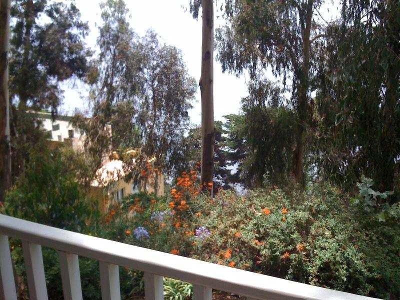 Actual view from balcony - Vista desde el balcon