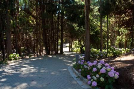Interior trails - Senderos interiores
