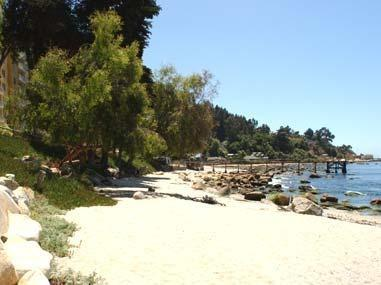 Beach - Playa