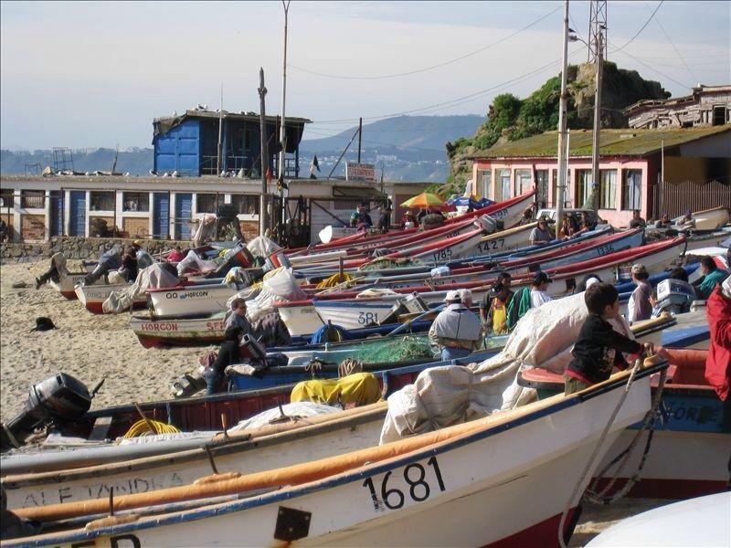 Horcon fisher town - Caleta de pescadores Horcon