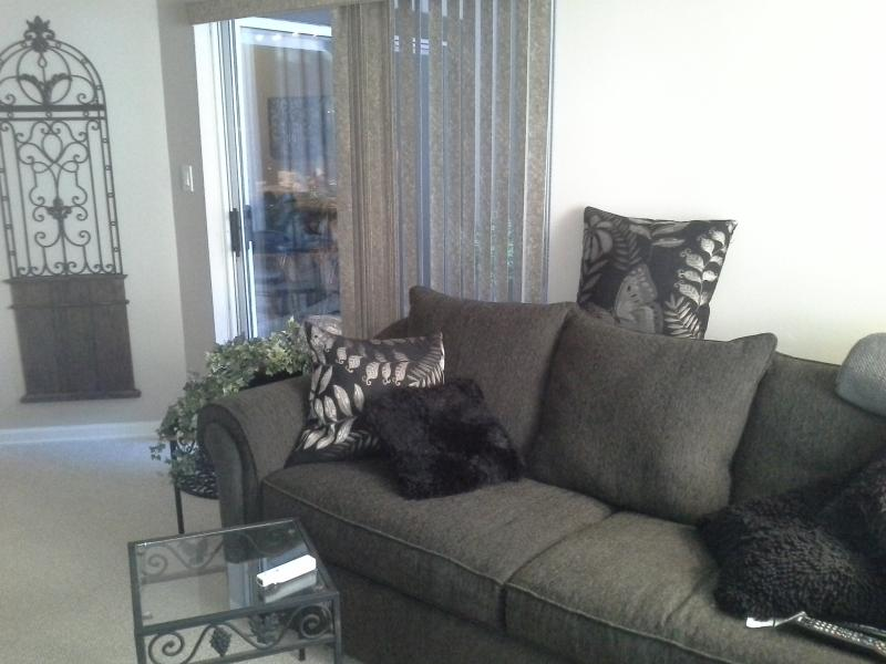 Living Room with Queen Size sofabed