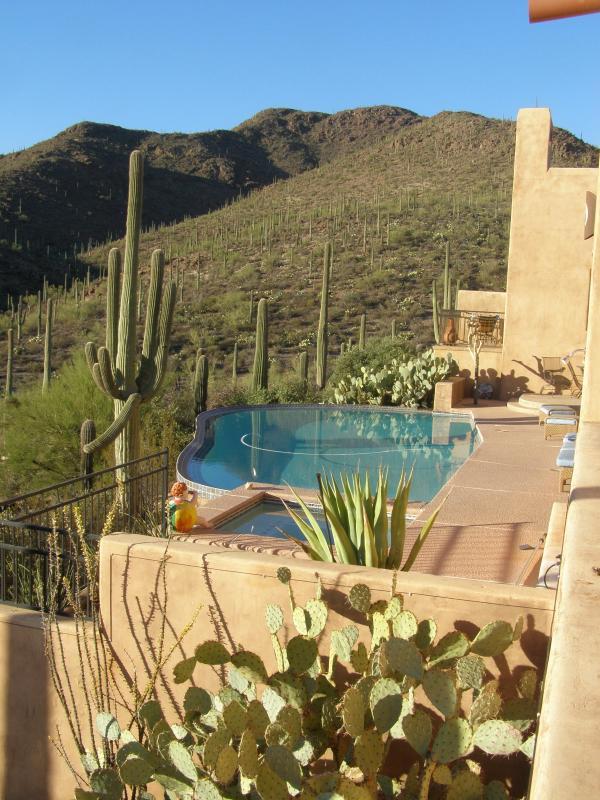 Zero Edge Pool over looking the Sonoran Desert