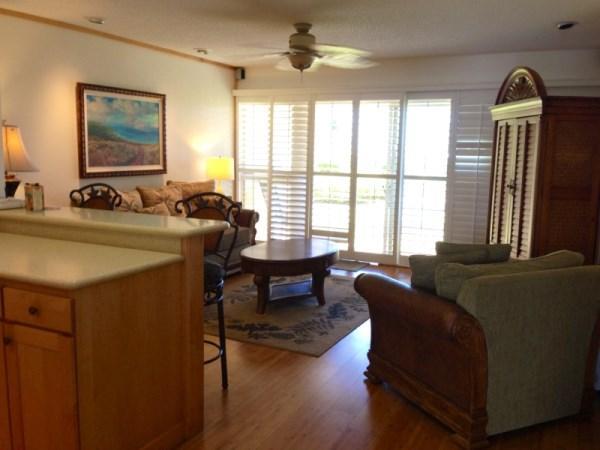 KS 117 View of Living Room
