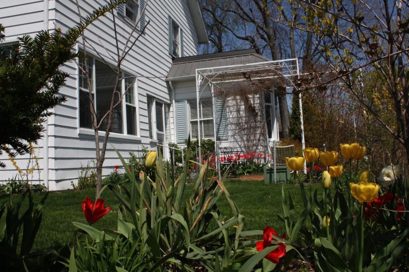 East pergola på våren