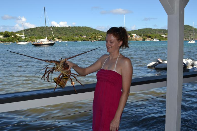 Venture out and catch a fresh lobster....