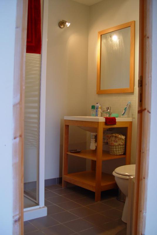 Douche & sanitaires dans la chambre à coucher en bas