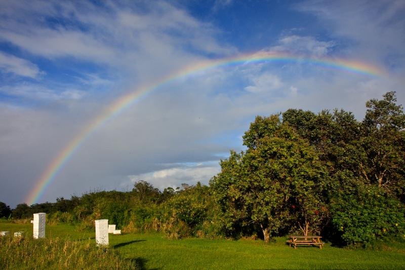 Rainbow over our farm and bee hives