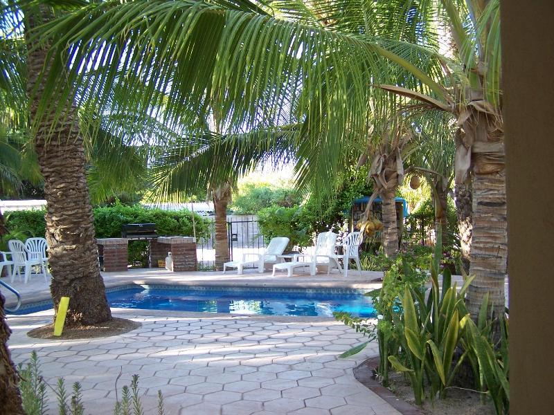 second pool surrounded by coco palms