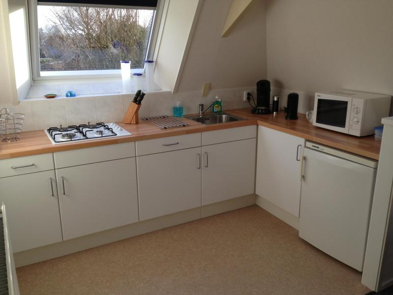 Private kitchen with cooker, microwave, fridge, water heater and coffee maker